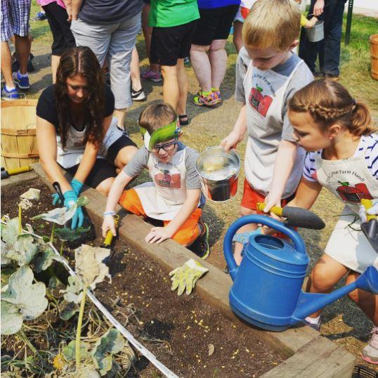 Little Farm Hands. Exibição para crianças de 3-10.